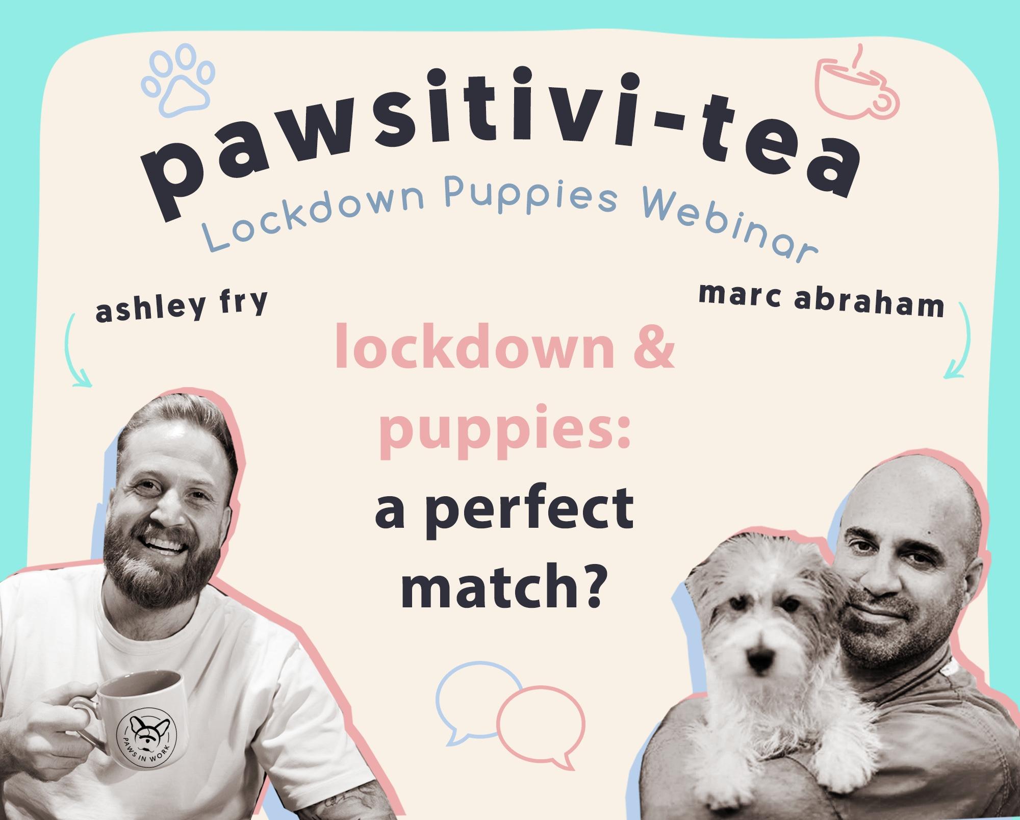 Marc Abraham Lockdown & Puppies