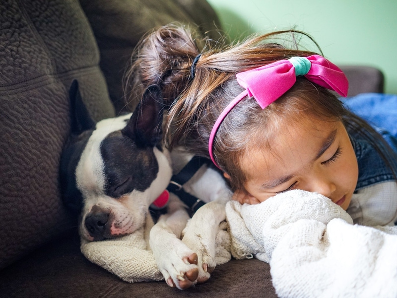 should I buy my child a puppy?